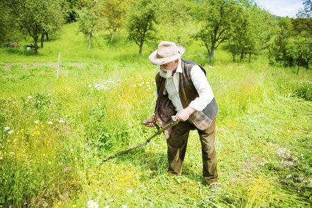 guadaña: Viejo granjero con la barba con guadaña para cortar el césped tradicionalmente