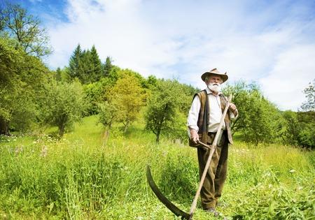 scythe: Old farmer with beard using scythe to mow the grass traditionally Stock Photo
