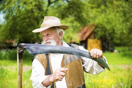 guadaña: Viejo granjero con barba afila su guadaña antes de usar para cortar el césped tradicionalmente