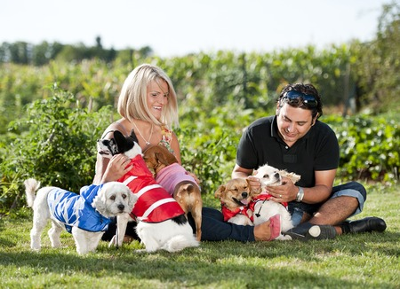 Happy young couple is sitting on grass and playing with their dogs photo