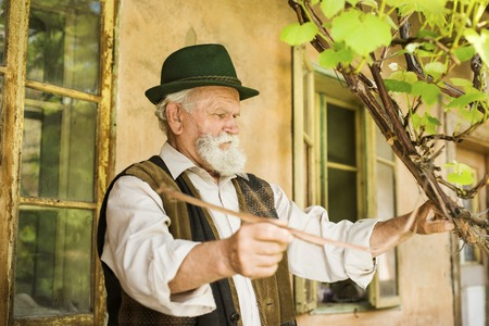 gaffer: Old farmer with beard and hat is working by his farmhouse