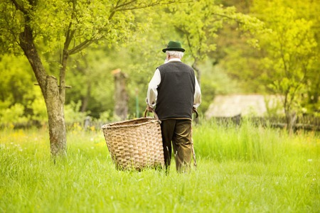 agriculturalist: Portrait of old farmer with beard and hat carrying big basket Stock Photo