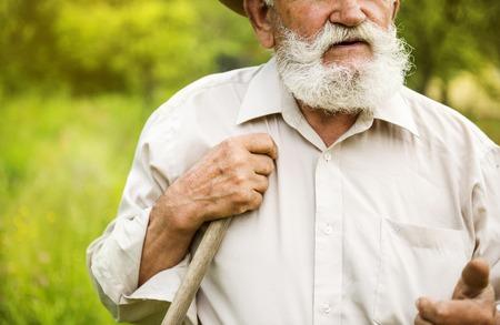 Old farmer with beard working with rake in garden photo