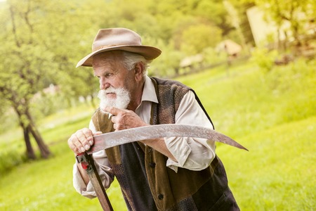 scythe: Old farmer with beard preparing his scythe before using to mow the grass traditionally