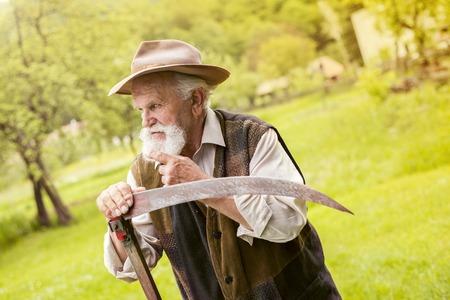guadaña: Viejo granjero con barba preparar su guadaña antes de usar para cortar el césped tradicionalmente Foto de archivo