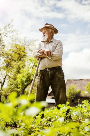 Old farmer with a hoe is having break from weeding photo
