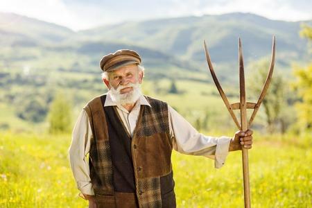 hayfork: Old farmer with beard and hat is holding hayfork in meadow