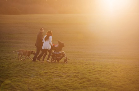 Happy and young family with pram and dog during the walk in nature photo