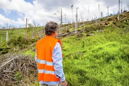 uomo sotto la pioggia: Soccorritore alla foresta distrutta per effetto di una forte tempesta in Alti Tatra, in Slovacchia