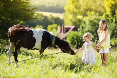 Portrait of two little sisters having fun at countryside outdoors, feeding pony Standard-Bild