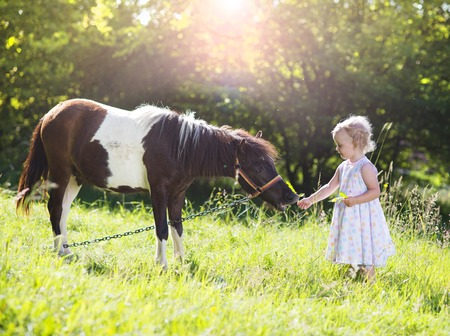 Portrait of tlittle girl having fun at countryside outdoors, feeding pony photo