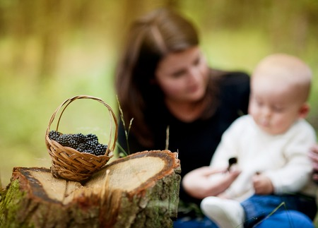 brambleberry: Happy young mother spending time with her baby son in forest picking and eating berries. Focus on the basket with berries