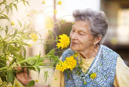 日当たりの良い庭の黄色の花とエプロンで年配の女性の肖像画