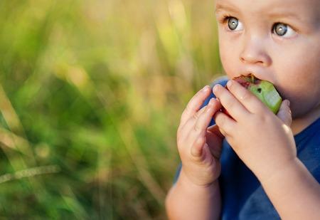 緑豊かな公園で赤いリンゴを食べるかわいい男の子