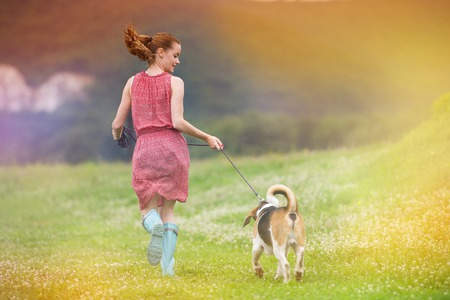 Young woman in dress and blue wellies walk her beagle dog in green nature photo