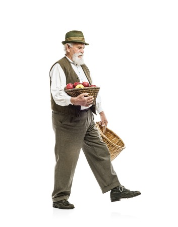 agriculturist: Old bearded farmer man in hat holding basket full of apples, isolated on white background