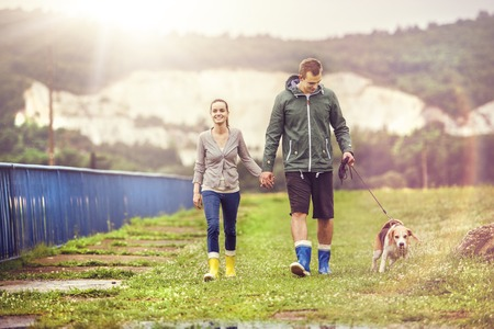 Young couple in colorful wellies walk beagle dog in rain. Stock Photo
