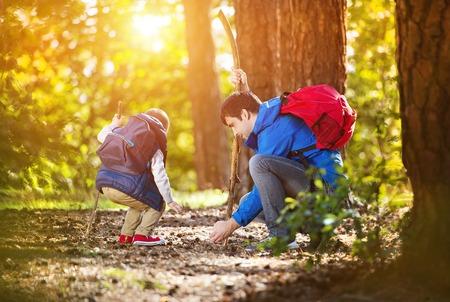 padres: Padre e hijo en el bosque