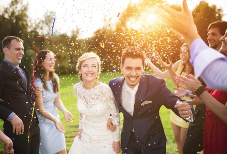 Full length portrait of newlywed couple and their friends at the wedding party showered with confetti in green sunny park Standard-Bild