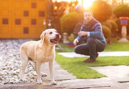 Mann mit Spaß und Spielen mit seinem Hund Standard-Bild - 36829122