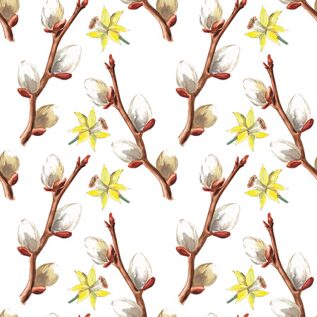 pussy: Hand drawn daffodil flowers and pussy willow branches background. Vector illustration. Stock Photo
