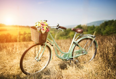 meadows: Vintage bicycle with basket full of flowers standing in the field Stock Photo