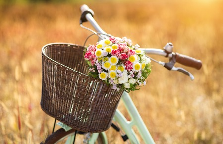 basket: Vintage bicycle with basket full of flowers standing in the field Stock Photo