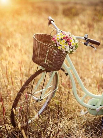Vintage bicycle with basket full of flowers standing in the field Foto de archivo