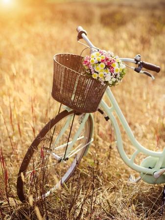 bicicleta retro: Bicicleta de la vendimia con la cesta llena de flores de pie en el campo
