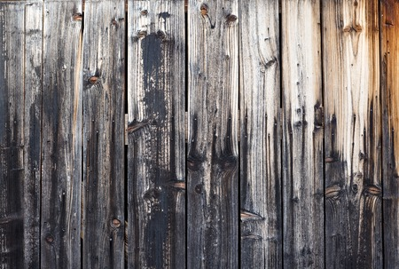 Schede di legno con texture come sfondo chiaro