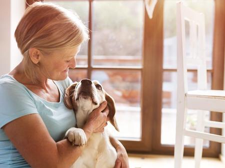 perros jugando: Mujer mayor con su perro en el interior de su casa. Foto de archivo