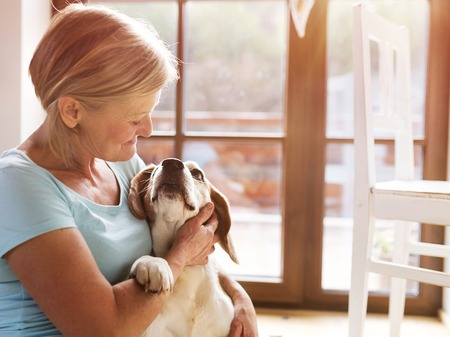 one senior adult woman: Senior woman with her dog inside of her house.