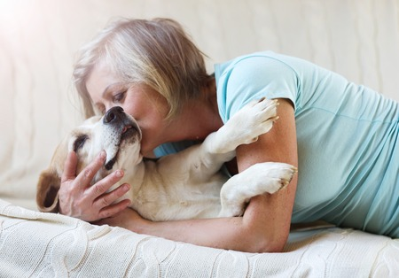 blankets: Senior woman with her dog on a couch inside of her house. Stock Photo