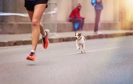 piernas hombre: Corredor joven irreconocible y un perro en la carrera de la ciudad