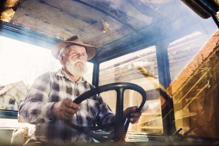 hombre viejo: Hombre mayor en la granja de conducir un tractor viejo