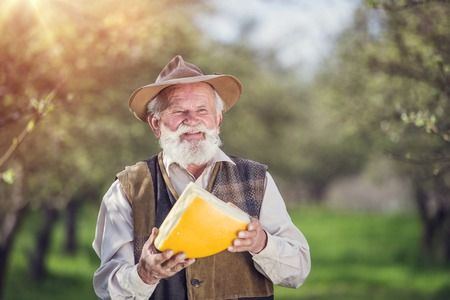 white cheese: Senior farmer with organic cheese outside in green nature