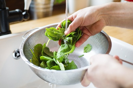 white wash: Unrecognizable man washing green salad leaves in the kitchen sink Stock Photo