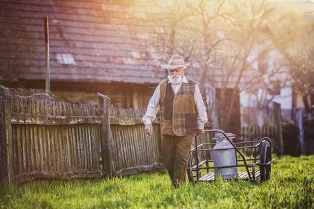 milk mustache: Senior farmer carrying kettle full of milk