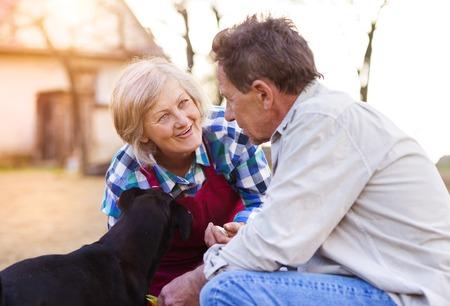 women friendship: Senior couple planting seeds of garlic in their garden