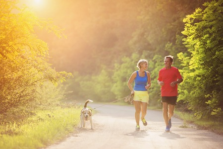 sports: Active seniors running with their dog outside in green nature Stock Photo