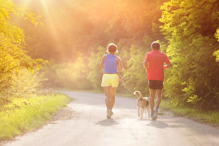 at leisure: Active seniors running with their dog outside in green nature Stock Photo