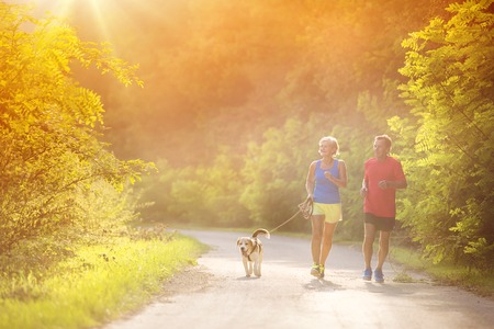 Active seniors running with their dog outside in green nature Banco de Imagens