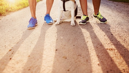 active seniors: Unrecognizable seniors getting ready for a run with their dog outside in green nature Stock Photo