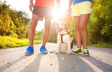 Actieve senioren zich klaar voor een run met hun hond buiten in de groene natuur Stockfoto