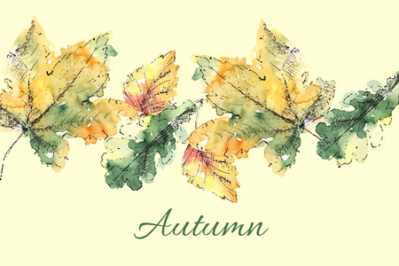 Colorful hand drawn autumn leaves. Vector illustration.