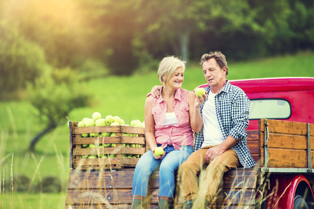 woman gardening: Senior couple sitting in a truck after harvesting apples Stock Photo