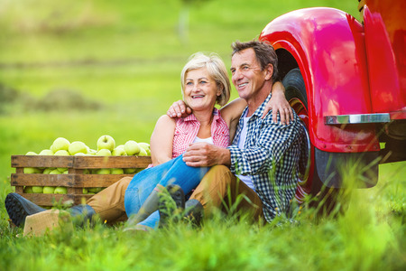 agriculture: Senior couple sitting next to the red truck after harvesting apples