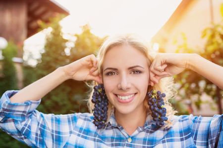 wineries: Beautiful young  blond woman harvesting blue grapes Stock Photo