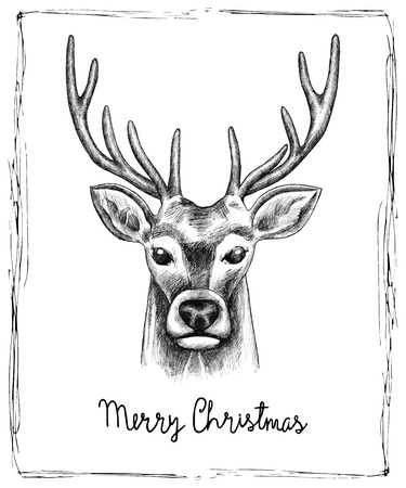 Hand drawn reindeer Christmas card. Vector illustration.