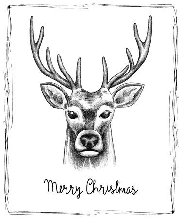 hand drawn: Hand drawn reindeer Christmas card. Vector illustration.